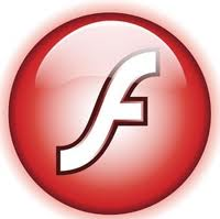 Flash version: User Requirements