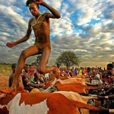 Etiopia: danzando sulle schiene dei tori